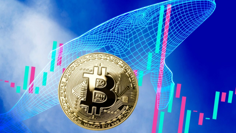 Whale Alert: В сети биткоина замечена транзакция почти на $108 млн.
