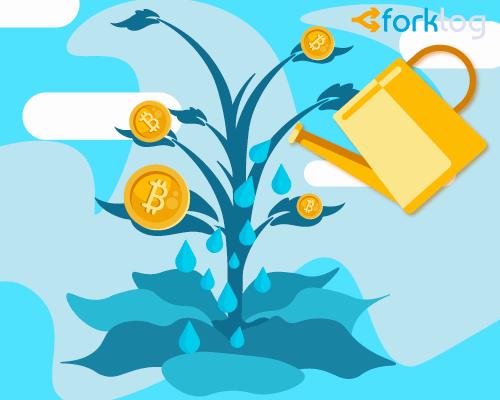 Финансовый эксперт: управляющим активами нужно инвестировать 1-2% средств в биткоин