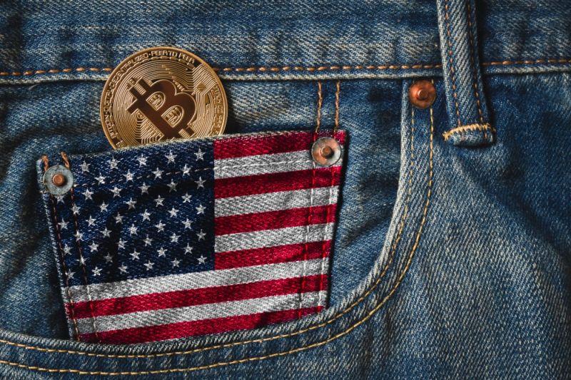 80 миллионов американцев получили от государства $1200 и... вложились в биткоин