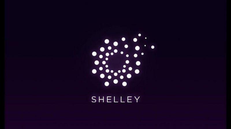 Стала известна дата запуска обновления Shelley для основной сети Cardano