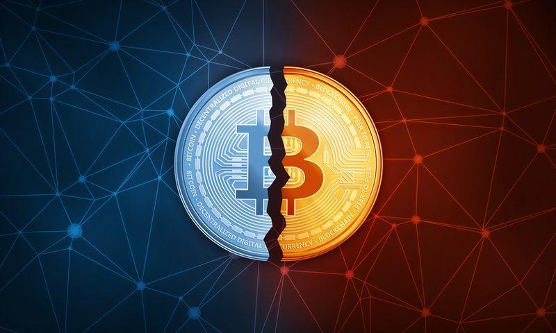 Ари Пол: Через несколько лет биткоин-рынок разделится на два лагеря