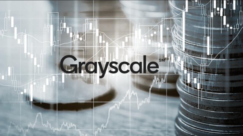Grayscale Investments купила 75 419 ETH