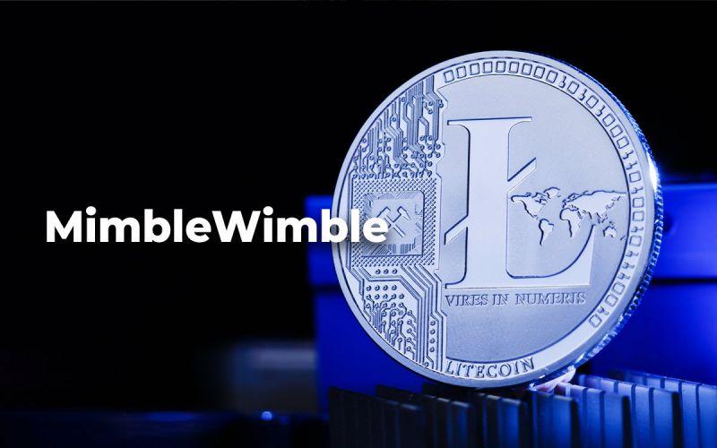 Код протокола MimbleWimble будет внедрен в Litecoin в первом квартале 2021 года