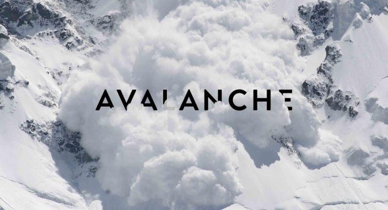 В блокчейне Avalanche была обнаружена ошибка