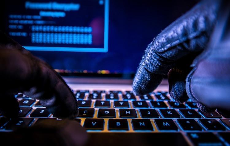 Эксперты: Объем мошенничества с криптовалютами вырастет в два раза