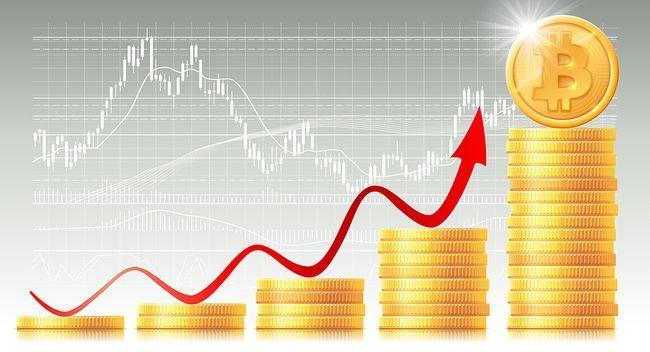 Цена биткоина прибавила более 10% за сутки