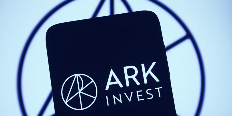 ARK Invest вложили в акции Robinhood почти 1,3 млн
