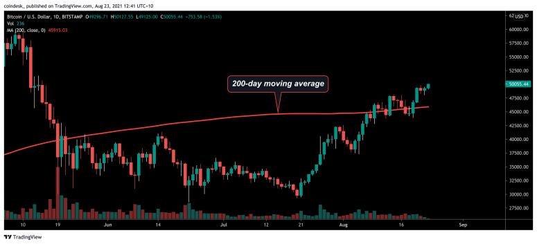 Цена биткоина поднялась выше $50 000. Индикатор жадности зашкаливает