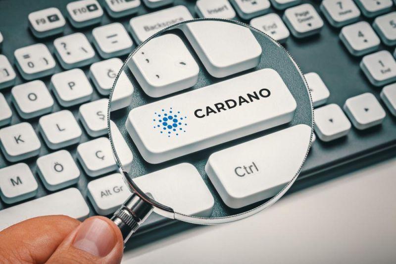 Стала известна дата хардфорка Alonzo в сети Cardano