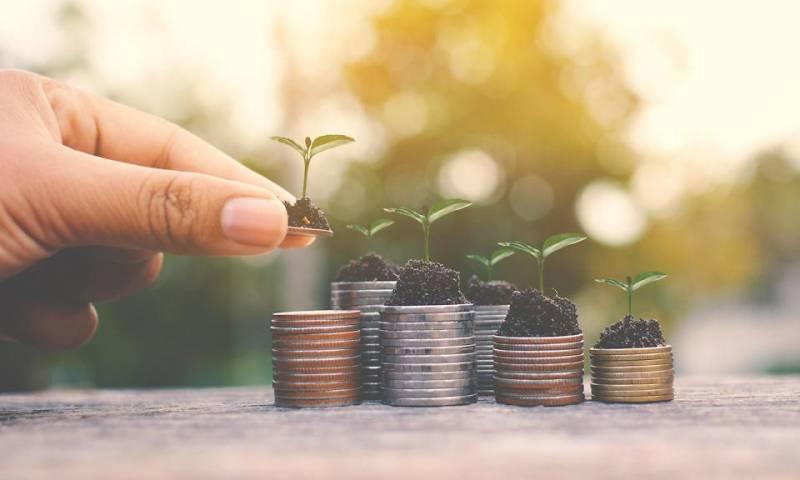 Какие монеты принесли инвесторам прибыль?