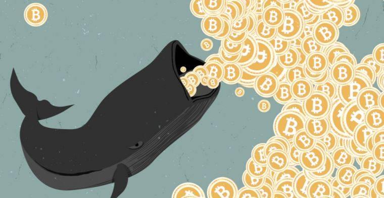 4500 BTC на сумму $50 млн были перемещены на биржу Binance. Трейдеры опасаются распродажи